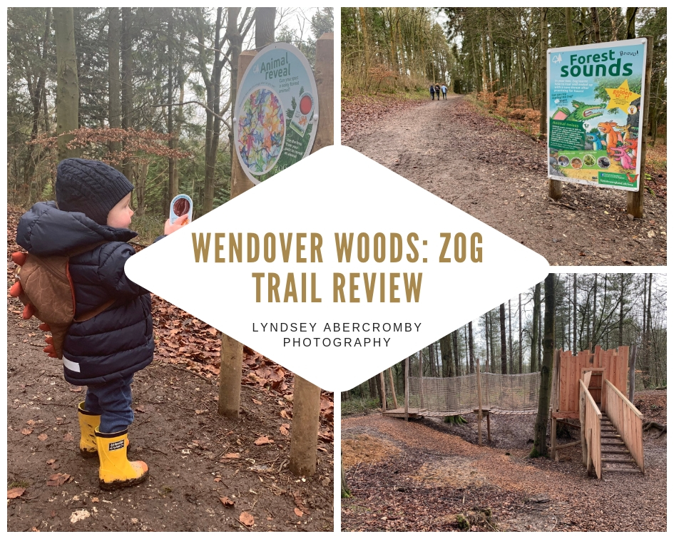 Wendover Woods Photoshoot